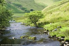 River Rawthey, Cautley, Sedbergh in the Yorkshire Dales, Cumbria, England