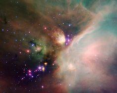 Newborn baby stars