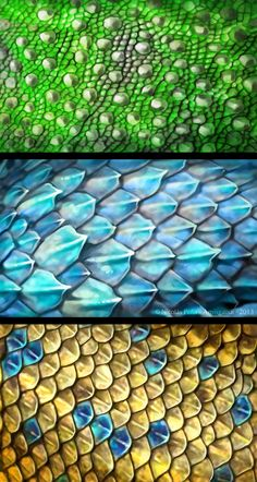 Scales by Amisgaudi on deviantART More