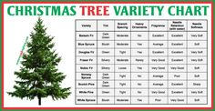 Christmas tree variety chart