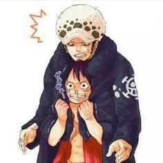 Law et Luffy