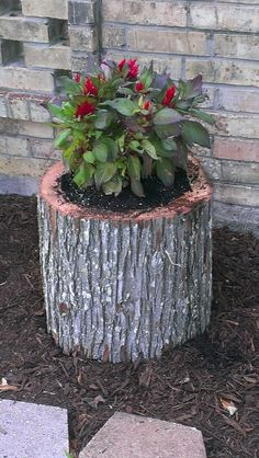 Tree Stump Flower Pot