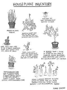 houseplant inventory - anne emond