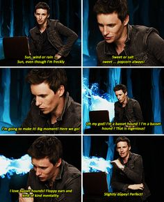 When he discovered his Patronus, and it was a slightly dopey Basset Hound. | 23 Times Eddie Redmayne Was A Gift We Didn't Deserve