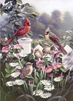 Cardinals 'N' Babies by Bradley Jackson