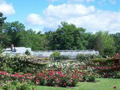 8. Elizabeth Park Rose Gardens (Hartford)