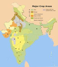 kharif crops examples - Google Search