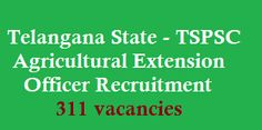Telanagna Agricultural Extension Officer Recruitment 2016 www.tspsc.gov.in