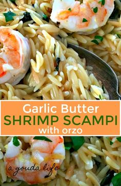 Orzo and shrimp cooked in a delicious garlick-butter-white wine sauce with a bust of fresh lemon. One pan + 30 minutes. Couldn't be any easier or loaded with more flavor! Orzo Recipes, Fish Recipes, Seafood Recipes, Healthy Recipes, Recipes With Cooked Shrimp, Healthy Foods, Scampi, Shrimp Dishes, Pasta Dishes