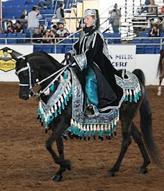 Scottsdale Arabian Horse Show - Costume Class Learn about #HorseHealth #HorseColic http://www.loveyour.horse