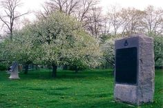 Blooming apple trees of the orchard on the Brian Farm at Gettysburg.