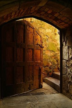 That is an awesome door to a wine cellar