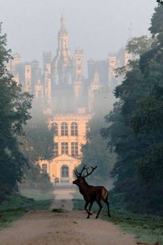 Castle of Chambord, La Loire, France.