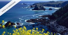 The PureWow guide to Inspiration Highway via @PureWow - The Ultimate Mendocino Road Trip (Stay the night in SF before taking off for this destination)