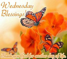 Wednesday Blessings Pictures, Photos, and Images for Facebook, Tumblr, Pinterest, and Twitter