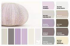 ColorSnap by Sherwin-Williams – ColorSnap by Jenkies