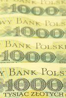 Beleggen, Trading, Geld en Economie: spaarzin