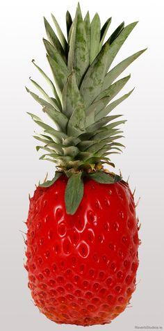 """""""Pineberry""""!?"""