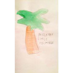 Miserable little palm tree.