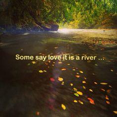 Image result for love is a river