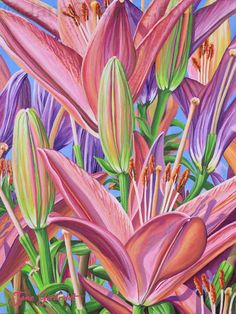 Field Of Lilies by Jane Girardot