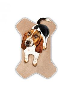 Buddy & Friends Memory Foam Bone Mat Pet Life, Cat Food, Scooby Doo, Dog Food Recipes, Memory Foam, Bones, Blankets, Africa, Plush