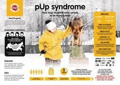Image result for Pedigree Pup syndrome