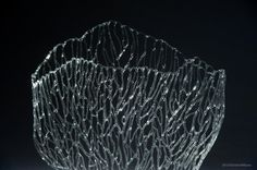 Delicate Glass Sea Life Sculptures by Emily Williams