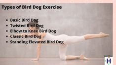 The classic core and spine stabilization exercise, bird dog, has many benefits. Here's a glimpse of the advantages and variations in bird dogs exercise. Bird Dog Exercise, Benefits Of Exercise