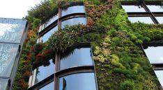 Todas as paredes podem ser vivas com o concreto verde,Fonte: Wikimedia commons / Musée du Quai Branly