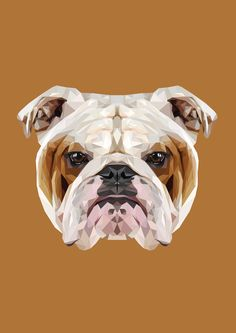 English Bulldog Polygon Art by peachandguava
