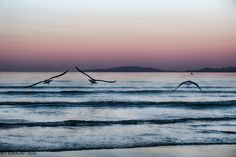 L'alba, il mare e il silenzio e… – daniele sala – appunti fotografici
