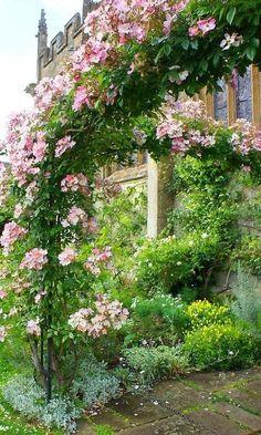 Pergola Over Front Door Beautiful Gardens, Beautiful Flowers, Ronsard Rose, Rose Arbor, Climbing Roses, Rock Climbing, Enchanted Garden, Garden Gates, Dream Garden