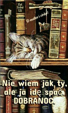 Good Night, Ale, Humor, Animals, Nighty Night, Animales, Humour, Have A Good Night, Animaux