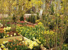 Valmiita puutarhasuunnitelmia