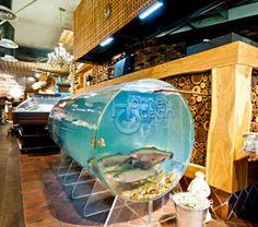 Акриловые аквариумы на заказ Globe, Ocean, Balloon, The Ocean