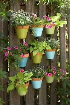 Potted plants mounted onto a fence