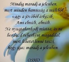 Josephine Wall, Osho, Buddhism, Einstein, Motivational Quotes, Life Quotes, About Me Blog, Wisdom, Words