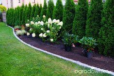 Front Yard Garden Design, Front Garden Landscape, Backyard Garden Design, Arborvitae Landscaping, Large Backyard Landscaping, Brick Wall Gardens, Natural Fence, Garden Inspiration, Outdoor Gardens