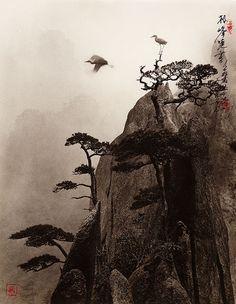Don Hong Oai09                                                                                                                                                                                 More