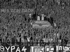paok gate4 Football Fans, Derby, Passion, Culture, Concert, Quotes, Sports, Classic, Qoutes