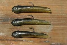 Uploaded by Fishing San DiegoThis video was about hookup baits, sorry didnt post yesterday.