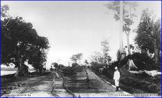"""Auguste Adam devant les futurs voies entre le quai du port et la plate-forme de la gare de Stanleyville Rive-Gauche, en 1903. Extrait de l'ouvrage """"Le Rail au Congo Belge"""", tome 1."""