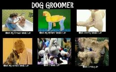 For the Dog Groomers haha