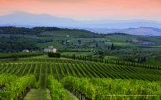 No way it is  the best to know the Etruscan Chianti than the foots! 2 March, One day trekking Info 329-0579570 - leviedelchianti@gmail.com