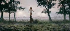 Mooi beeld..... balancerend op een boomstronk
