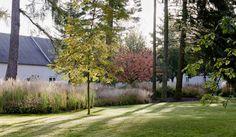 // Arboretum lacquer Bach By 3:0 Landscape Architecture. Collaboration: Elisabeth Esterer-Vogl. Photography by Rupert Steiner, Hertha Hurnaus