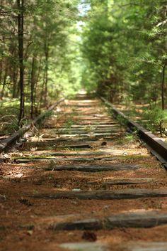 abandoned/forgotten railroad tracks | Forgotten Tracks