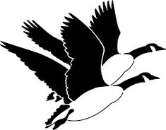 image result for canada clipart black and white flying wingflying geesebird