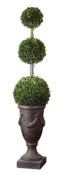 Preserved Boxwood, Triple Topiary